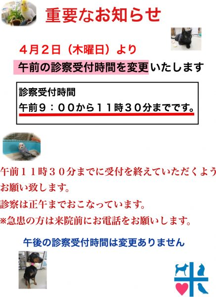 <お知らせ>